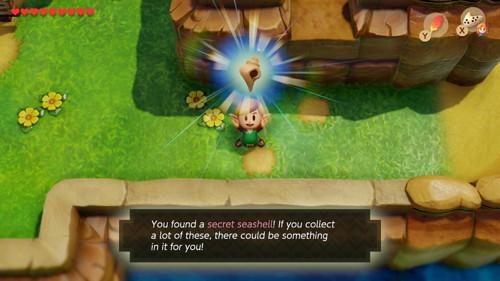 Link S Awakening Switch Secret Seashells